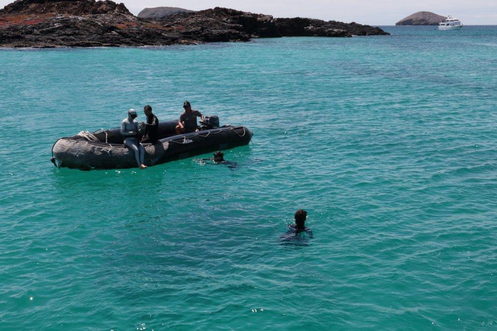 freediving-galapagos-apnea