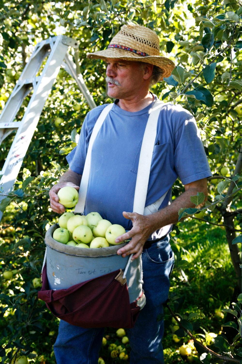 Black Diamond Farm and Cider owner Ian Merwin, with a basket of Calville blanc.