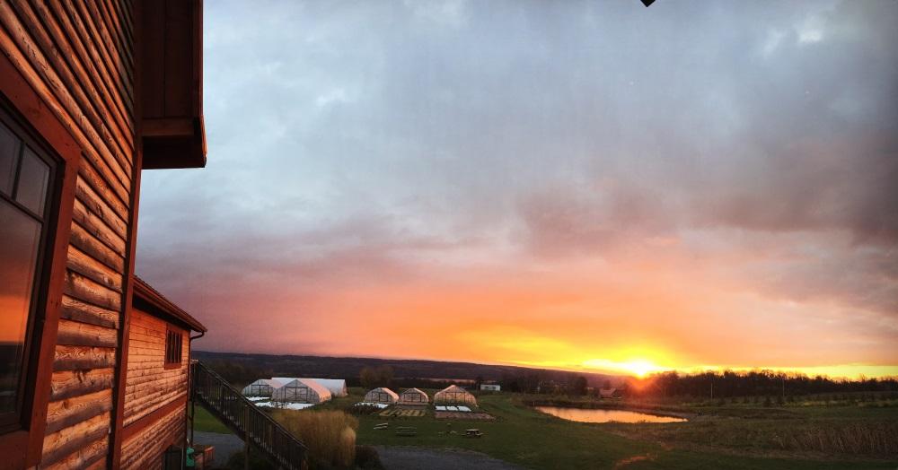sunrise 10.30.17.jpg