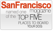 SF Magazine winner top 5 Doggy Lama