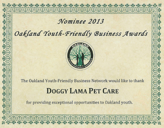 Doggy Lama Oakland business award