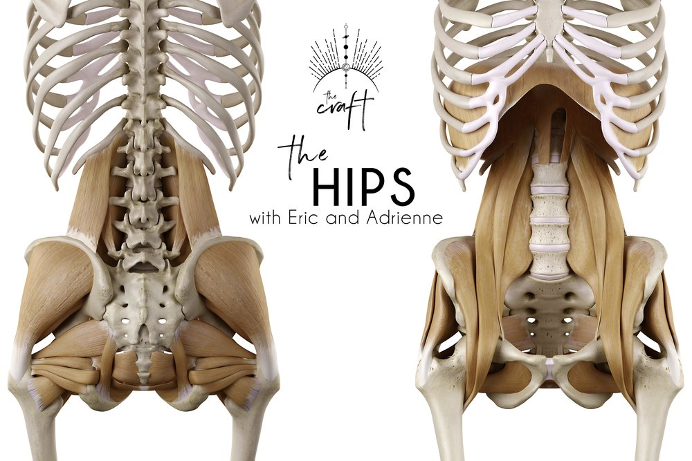 Alive Anatomy The Hips With Eric And Adrienne In Phinney