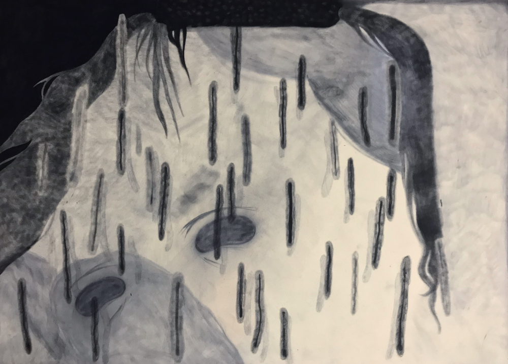 untitled    charcoal on velour   28 x 20   2018