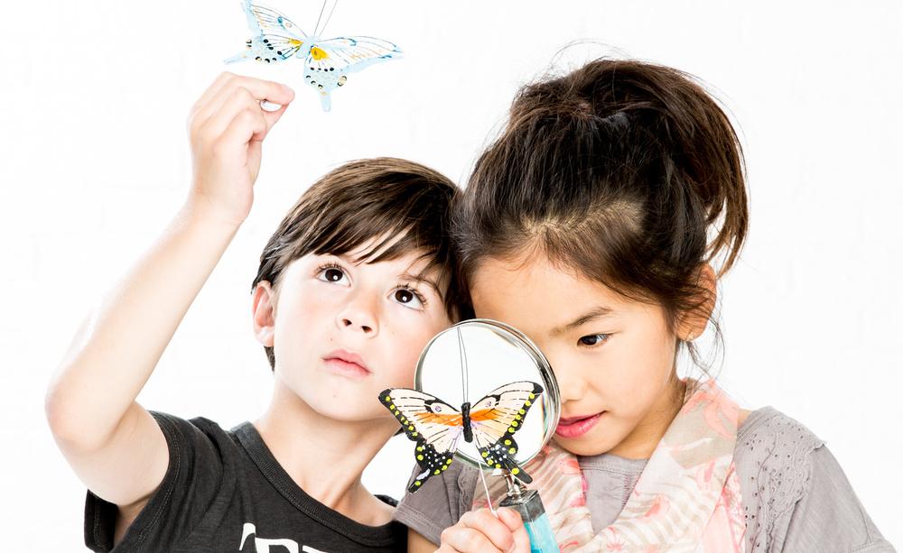 butterflies_comp_3_sfw.jpg