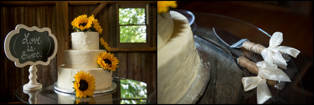 Mustard Seed Garden Wedding Pictures-029.jpg