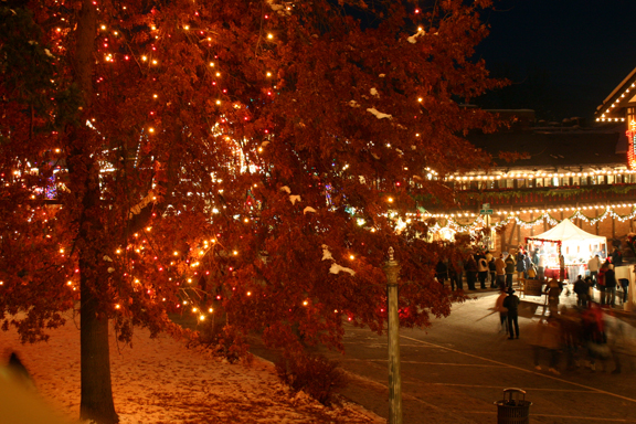 Leavenworth Tree Pic 3.jpg