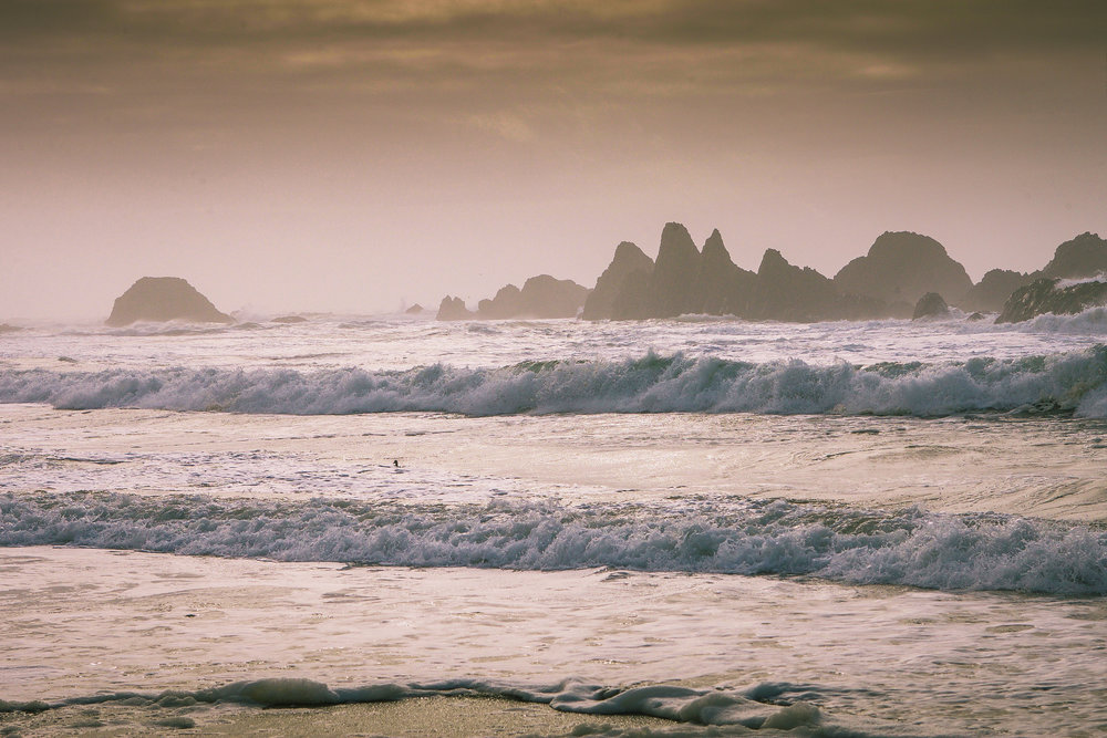 Oregon Coast (1 of 1).jpg