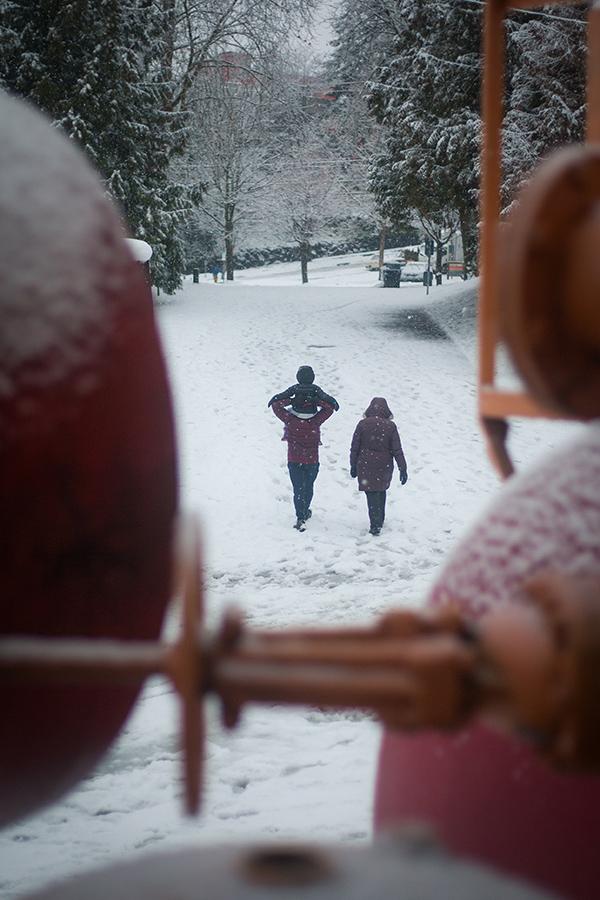 Snowmaggedon (6 of 26).jpg