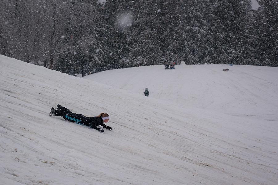 Snowmaggedon (9 of 26).jpg