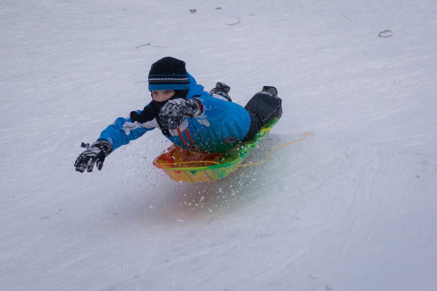 Snowmaggedon (21 of 26).jpg