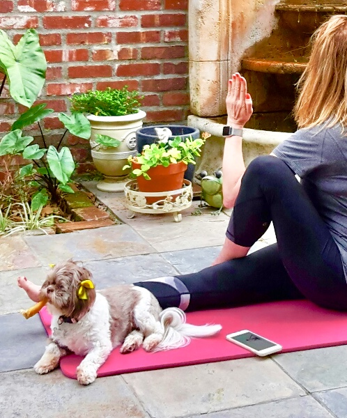 A personal Yoga practice at home can be done using an online app. My pup, Mala, is on my mat. - notice the chew bone in her mouth. It looks like a cigar!