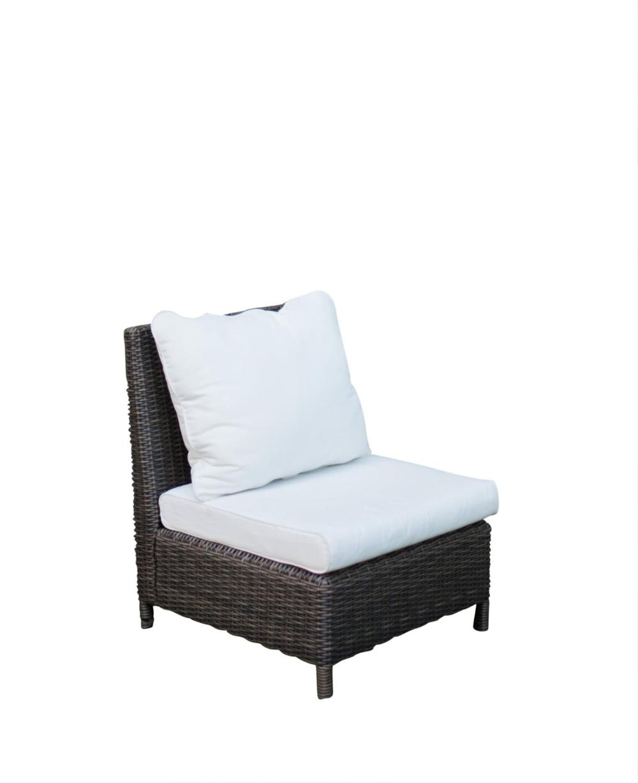 Gray Rattan Chairs (10)