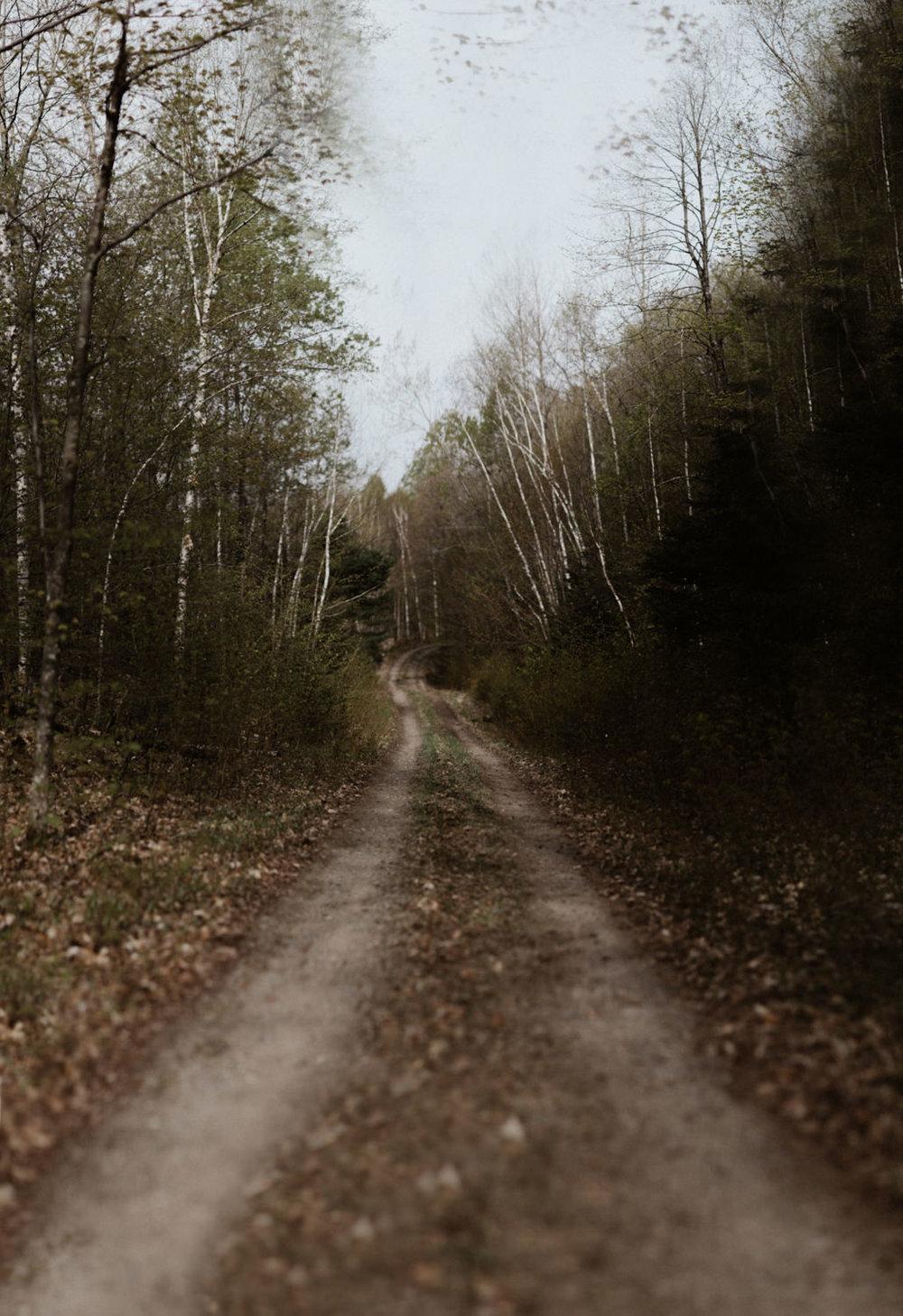 Pêche 2018 Full hd yanick lespérance outaouais peche aventure chasse lac forêt  (24 of 104).jpg