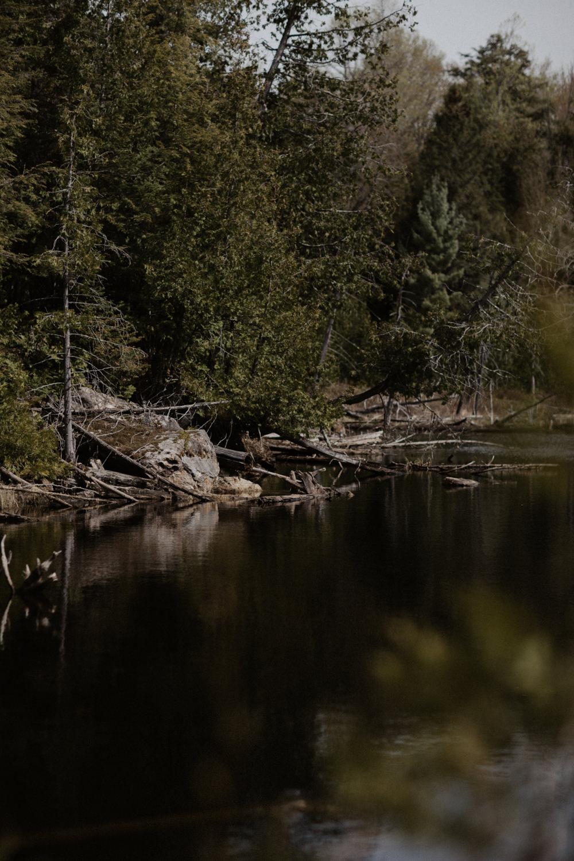 Pêche 2018 Full hd yanick lespérance outaouais peche aventure chasse lac forêt  (31 of 104).jpg