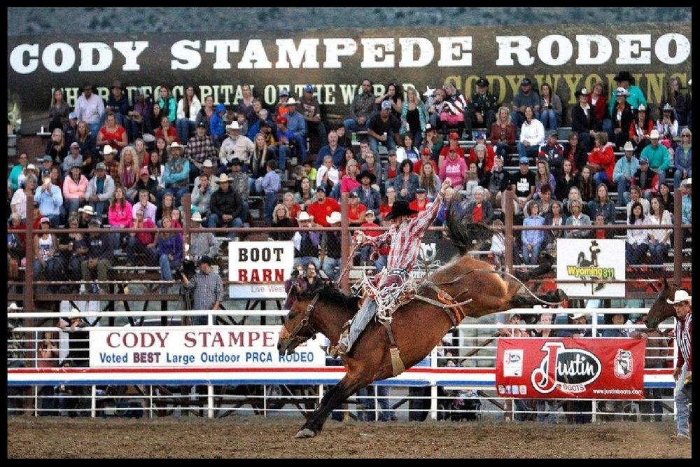 Buffalo Bill Cody Stampede Rodeo (Cody, WY)