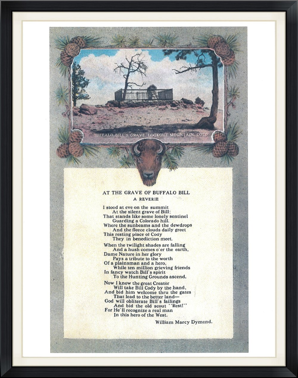 buffalo bills poem