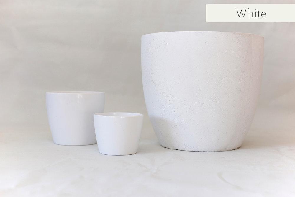 vesselwhite-web.jpg