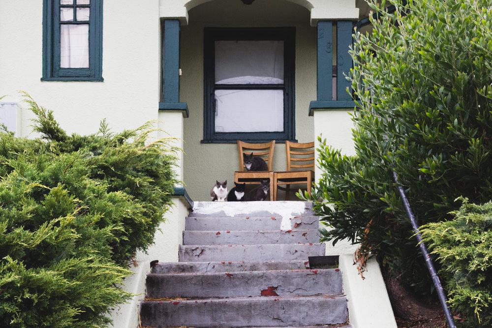 california2016-0024.jpg