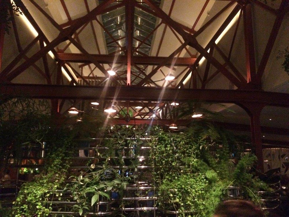 vegan_tour_of_london_best_vegan_restaurants_in_london_bluebird_chelsea_restaurant.jpg