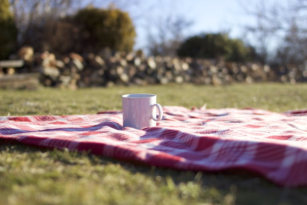 Lessons Learned on a Picnic Blanket in a Town of Twelve: On getting rid of anxiety, mindfulness, being vegan and more!