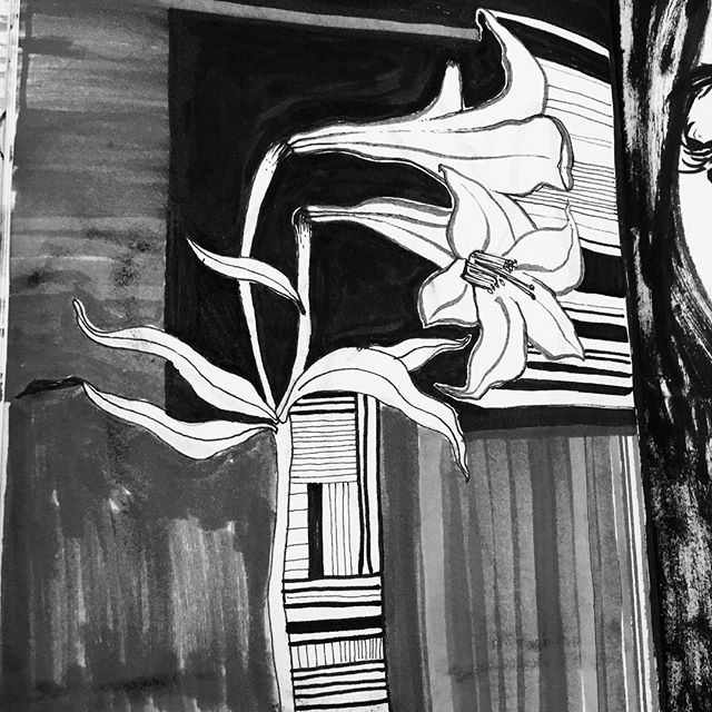 Wobbly stripes n floozzzz 🏳️🌈💐 . . . . . . . . . #illustration #illustrator #illustratorsoninstagram #drawing #draw #sketch #sketchbook #brushpen #lillies  #flower #stripes #quick