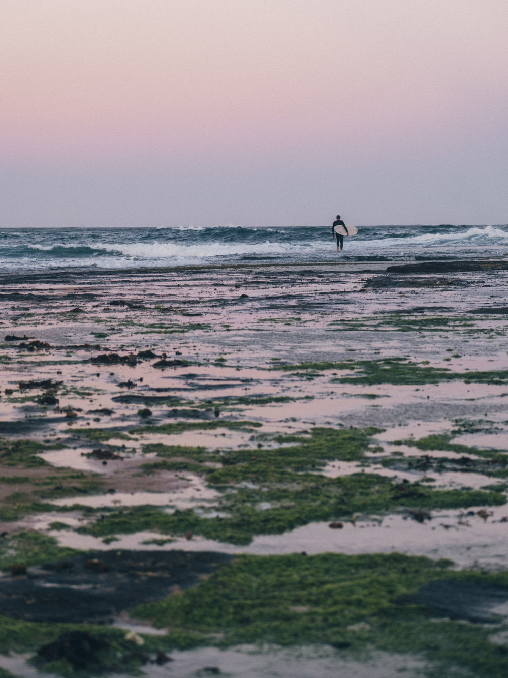 Surfer at Mona Vale