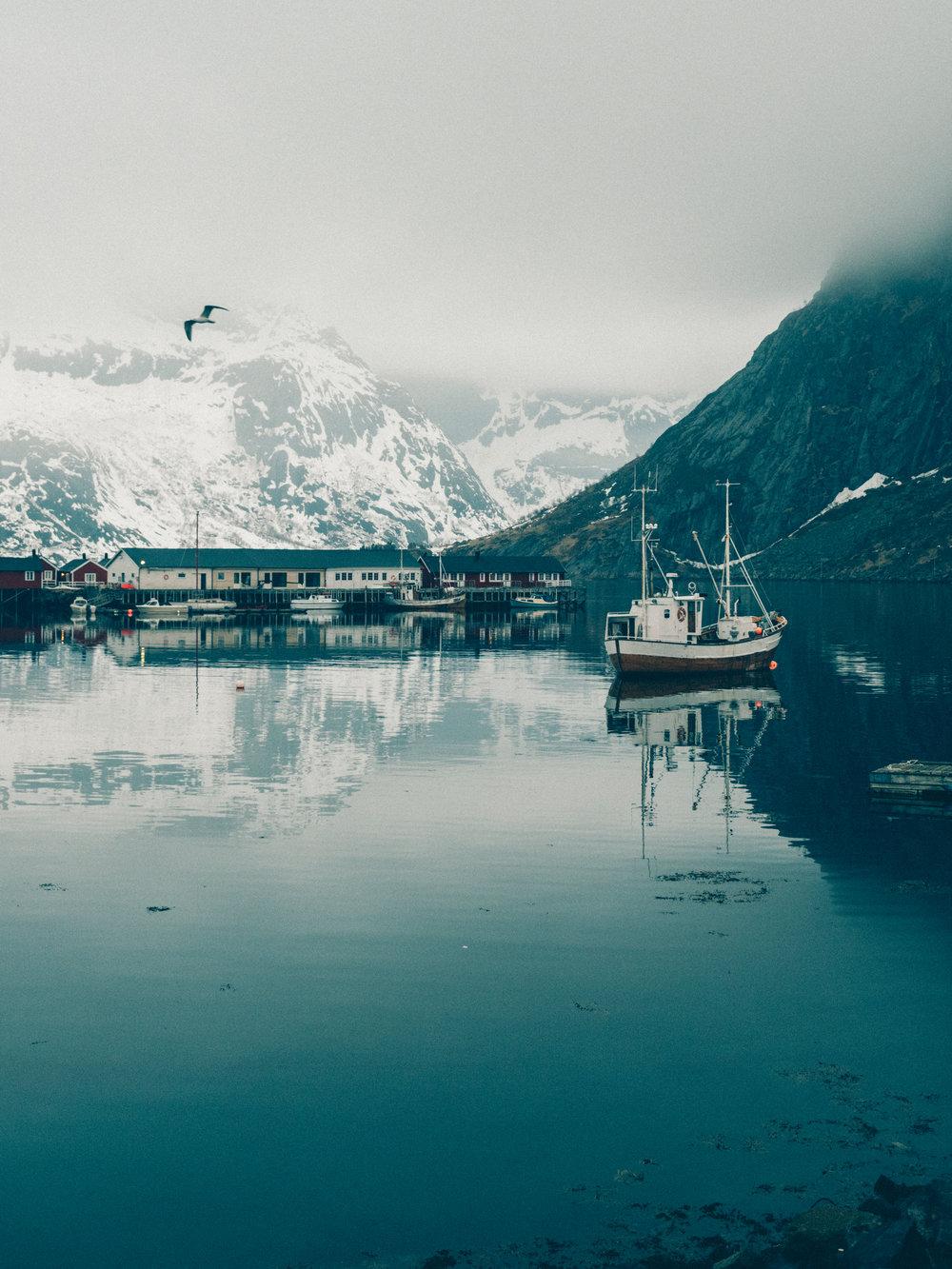 boat-hamnoy-fishing-lofoten-norway