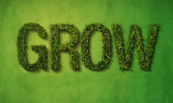 grow-your-business
