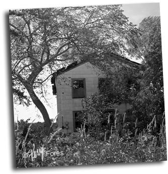 Abandon-House-Hwy26-300pxl-©KerryFores.jpg