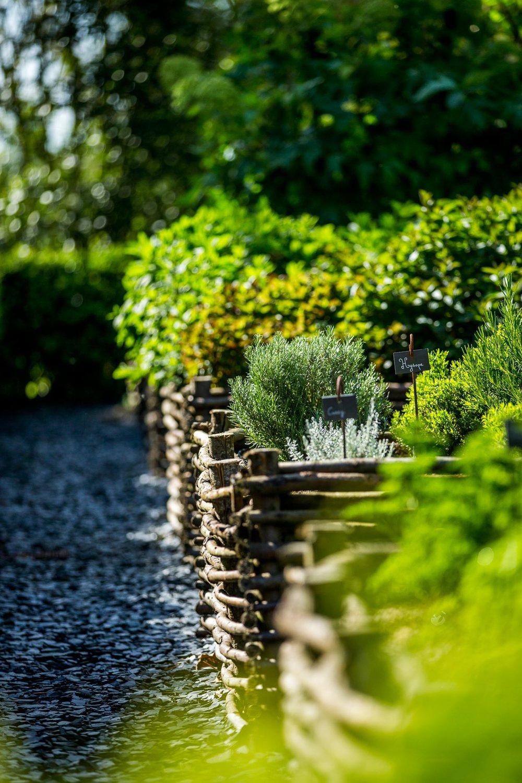 Herbes aromatiques du jardin des simples Domaine d'Ablon Normandie