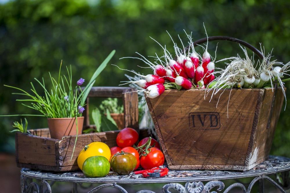Panier gournand des jardins du Domaine d'Ablon Normandie