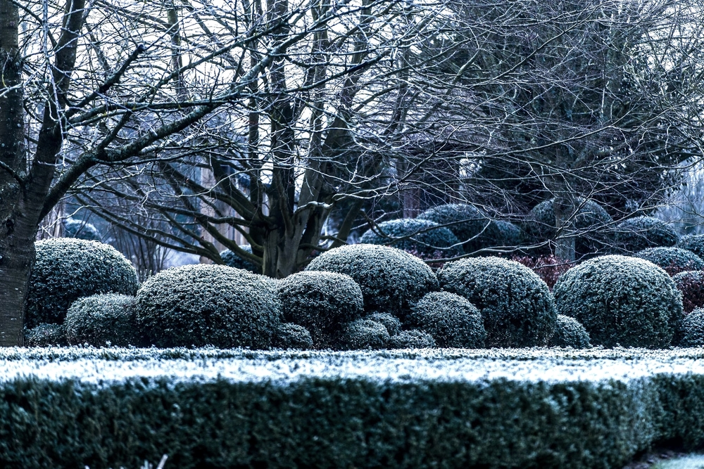 domaine_dablon_exterieurs_hiver©stephaneleroy-_69P3541.jpg