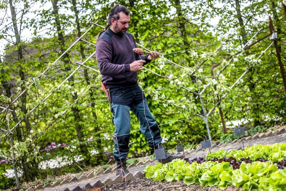 Nicolas le jardinier nicolas the gardener le domaine d for Le jardinier