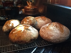 Freshly baked sourdough loaves!