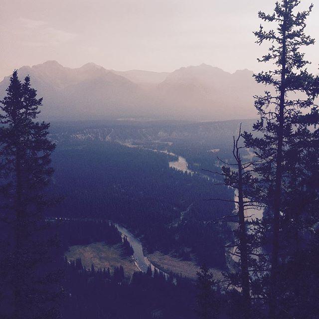 Helluva view, Alberta. Helluva view. ⛰🌲#banff #yobear