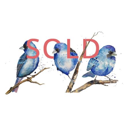 Three Blue Birds: 12x18, Watercolor
