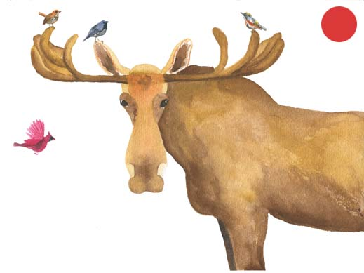 Don't Moose With Me: Watercolor, 7x5   Order a Print