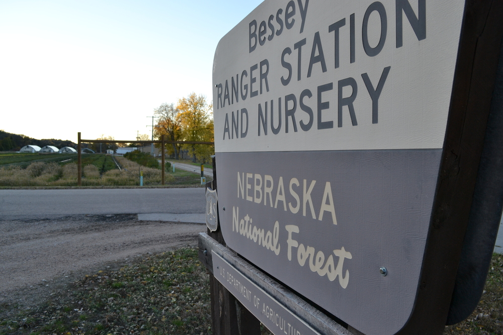 The tree nursery at the Nebraska National Forest. The nursery currently grows roughly 2.5 million bareroot confier and hardwood seedlings per year. The seedlings are distributed to all national forests in Region 2, including Colorado, Nebraska, South Dakota, and Wyoming; the states of Nebraska, Kansas, and South Dakota; the Bureau of Land Management; and the Bureau of Indian Affairs.