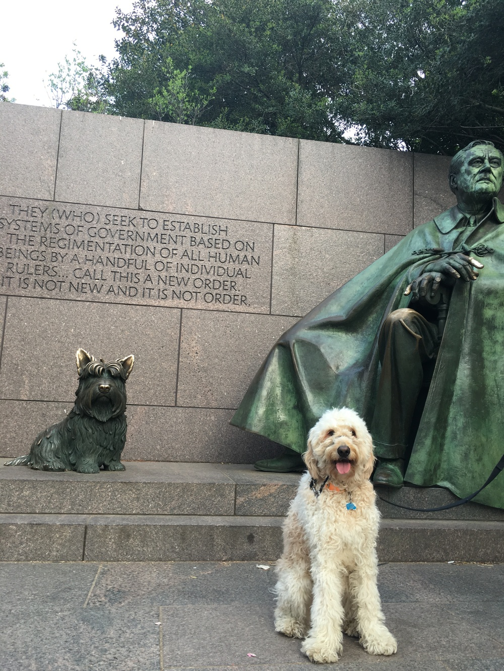 At the feet of FDR. He doesn't even know who that other dog is. Costello has no respect for history.