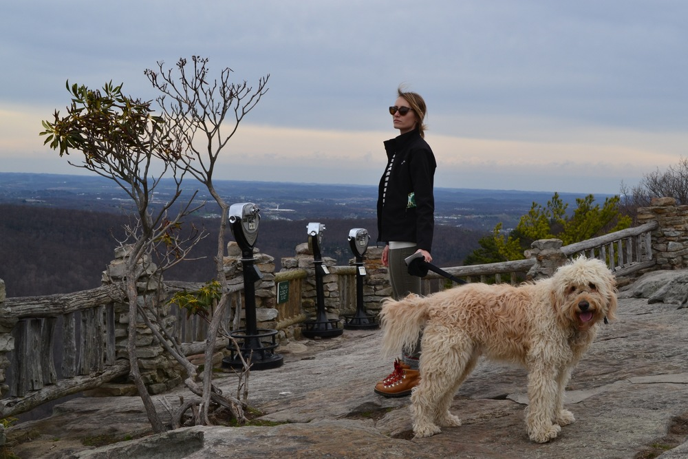 Mel and Costello at the Coopers Rock overlook. Yes, Costello did eventually get a hair cut.