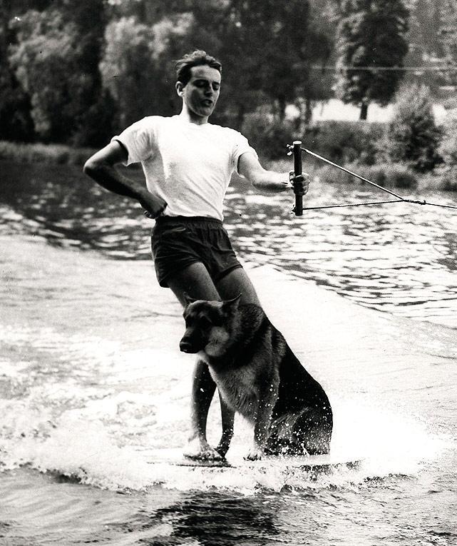 dog-watersk-blackandwhite.jpg
