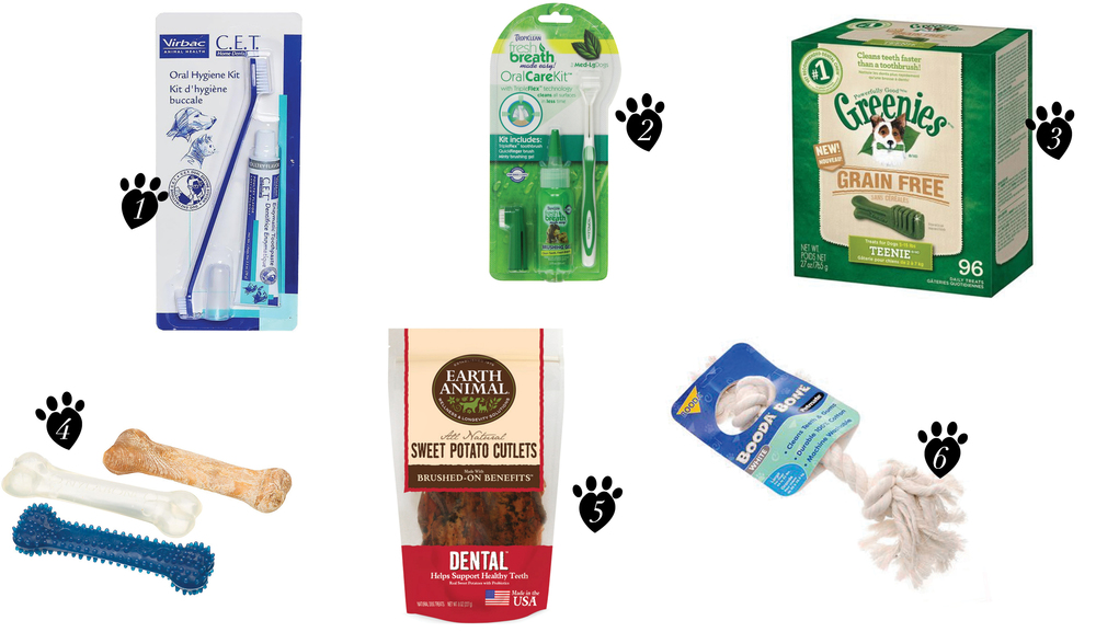 WHOWAGWEAR KRISTIN AYTONA NATIONAL PET DENTAL HEALTH MONTH BLOG PRODUCTS.jpg