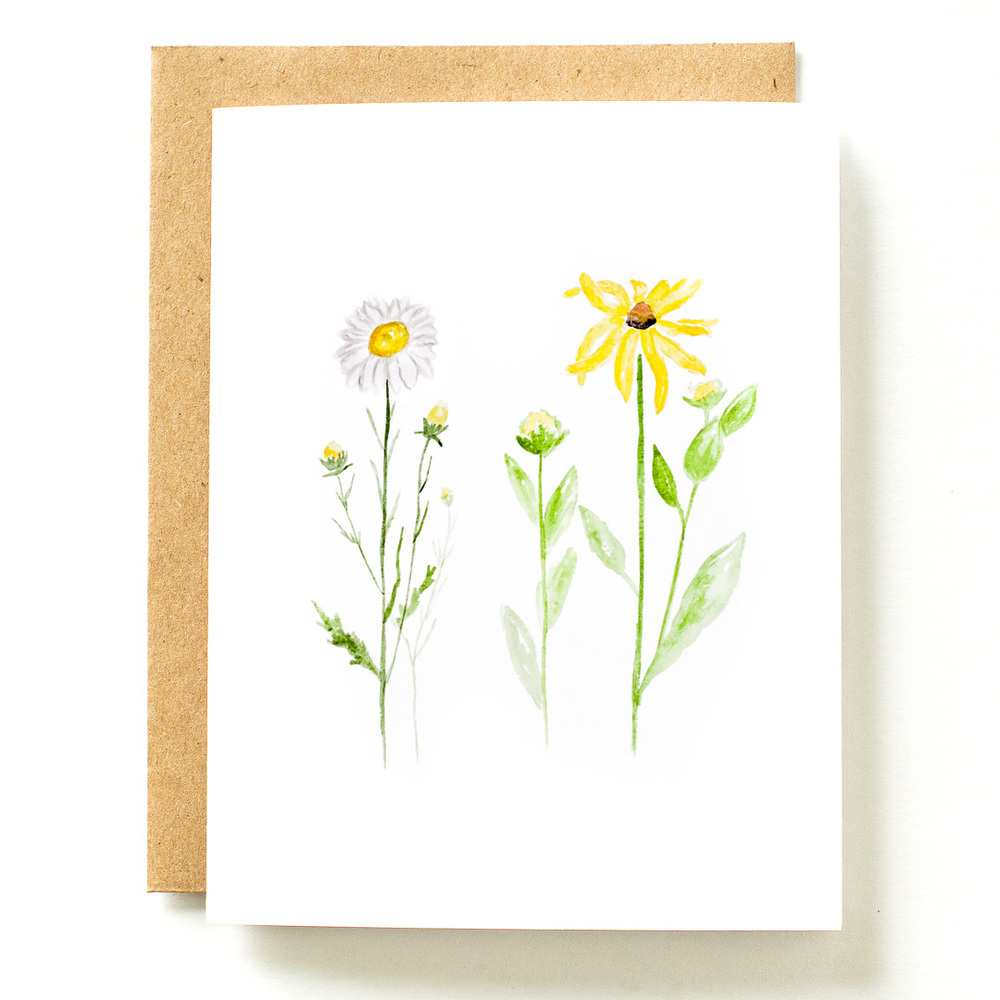 daisy botanical card photo.jpg