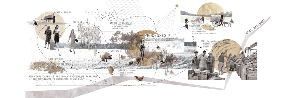 collage: complexity of farming processes