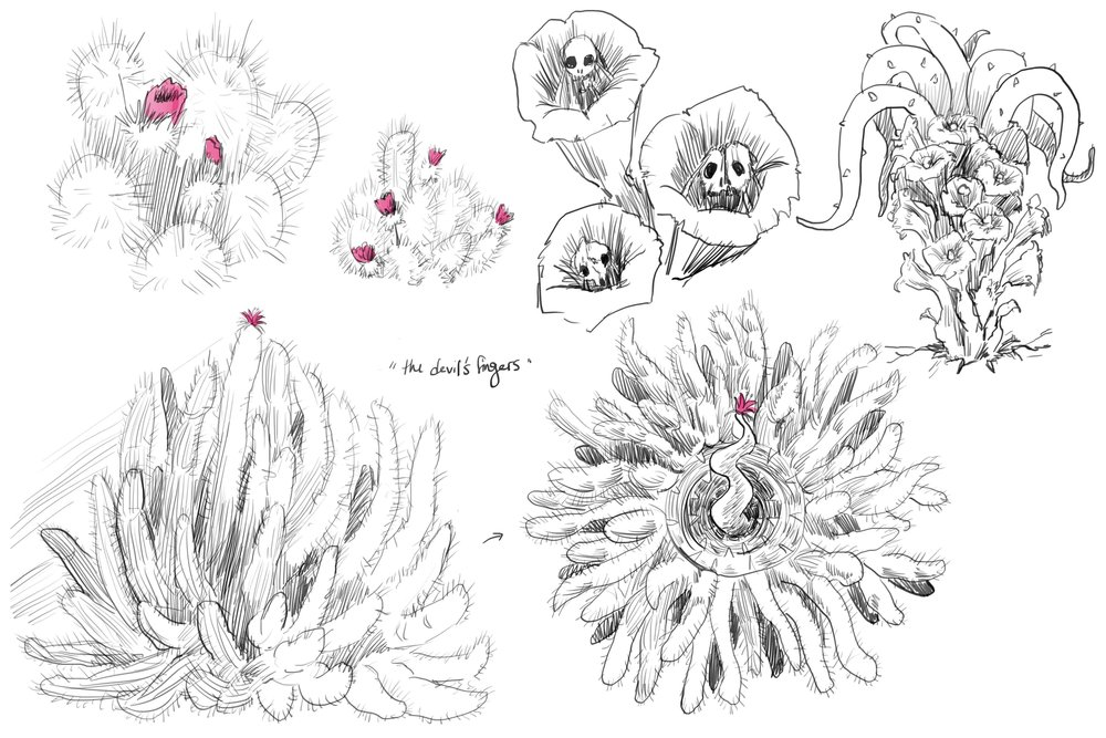 Candace_desert_badlands - flora 1.jpg