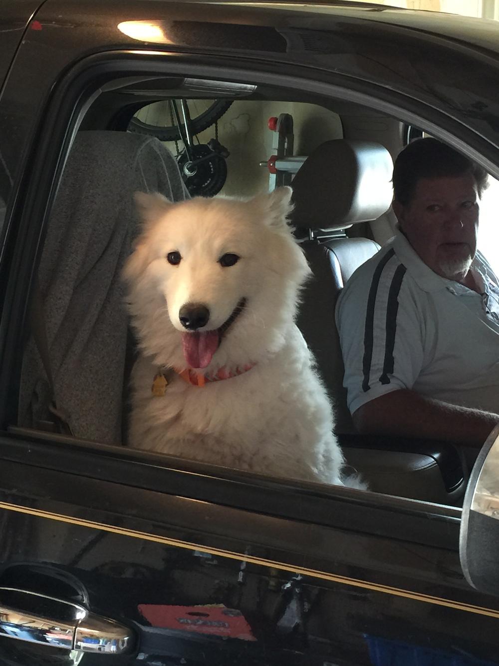 Blanca in car -2.JPG