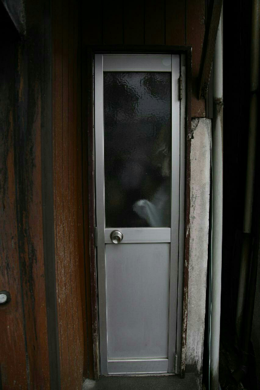 this is the kind of door you want to knock on just to see how thin the people inside the house are.