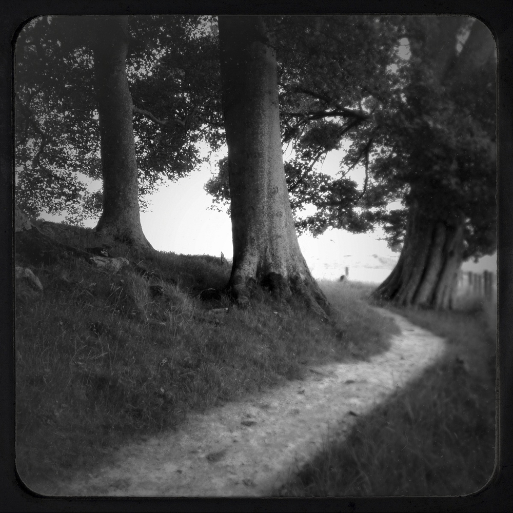 04_Avebury_25.jpg