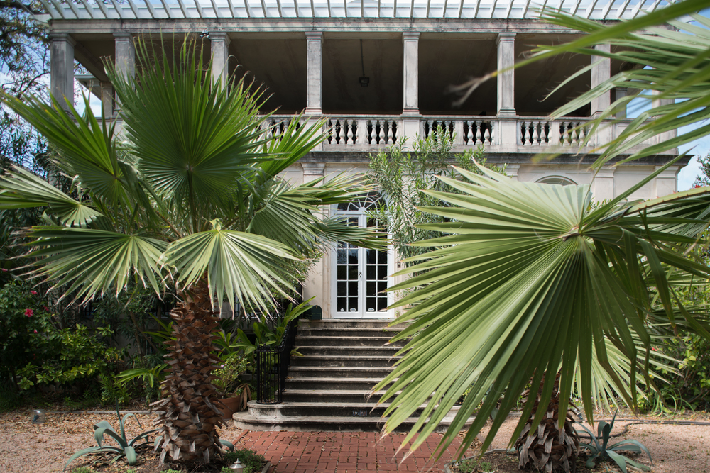 Palmettos greet visitors to a home in the Historic District, Galveston, Texas.