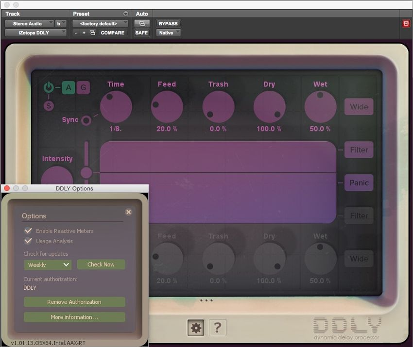 iZotope DDLY Delay Plug-in